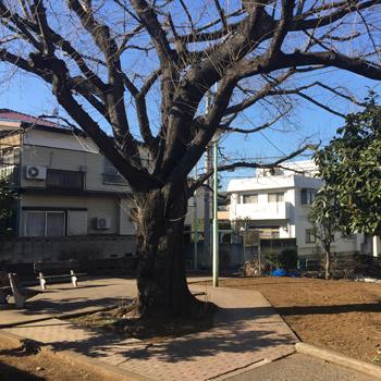 南田柄緑地:徒歩7分(約490m)
