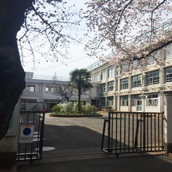 練馬区立中村小学校:徒歩1分(70m)