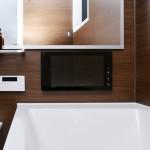 浴室16インチTV